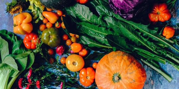 Alimentos con proteinas vegetal